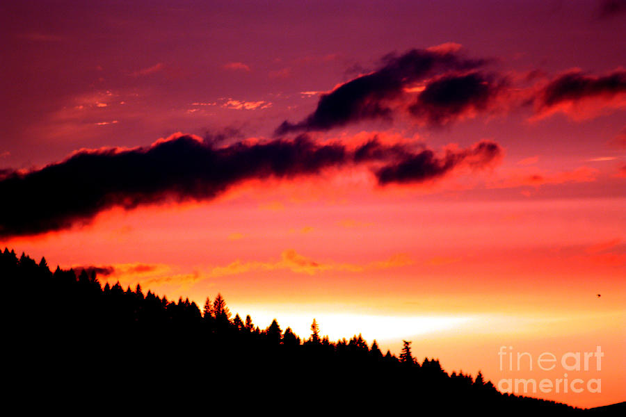 Sky Photograph - Purple Haze by Nick Gustafson