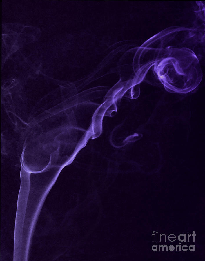 Purple Haze Photograph - Purple Haze by Paul Ward