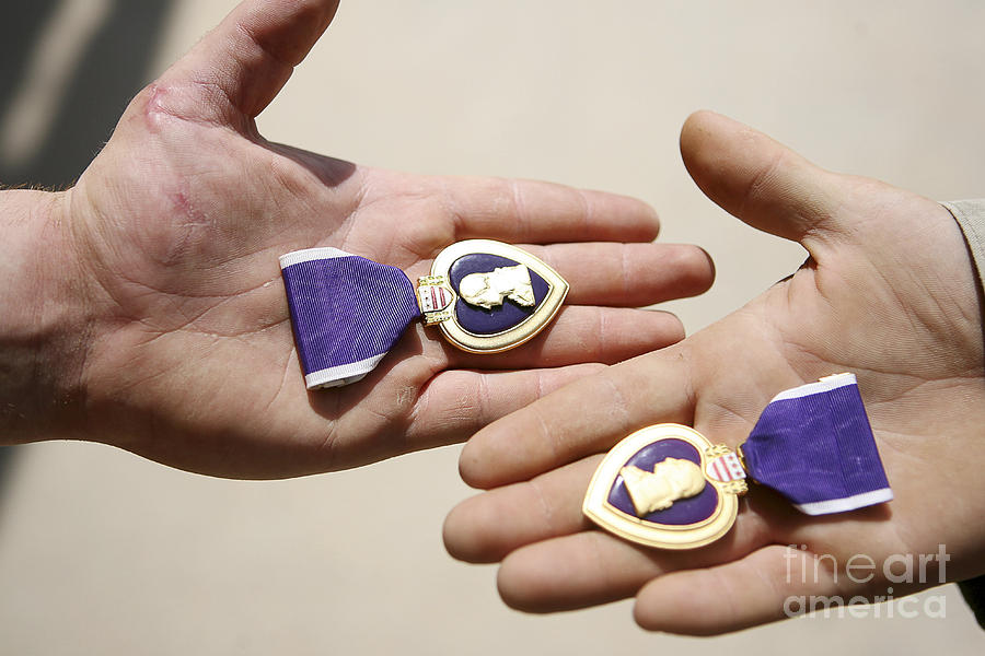 Adults Only Photograph - Purple Heart Recipients Display by Stocktrek Images