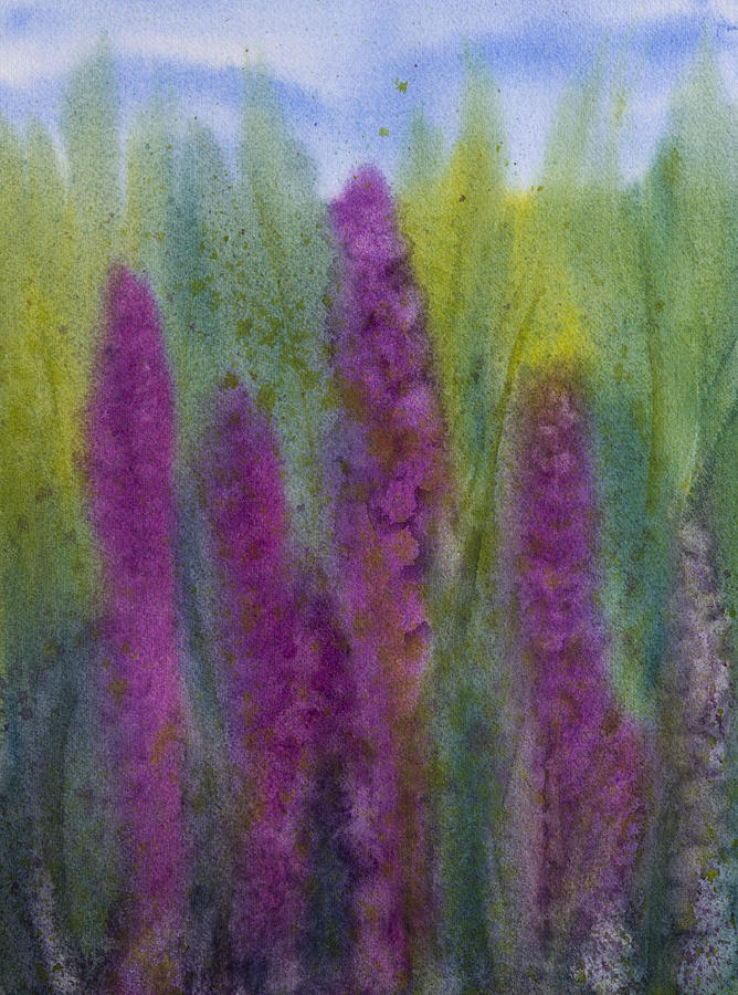 Purple Loosestrife Painting - Purple Loosestrife by Debbie Homewood