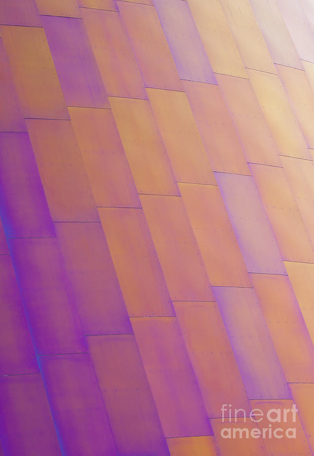 Purple Photograph - Purple Orange Two by Chris Dutton