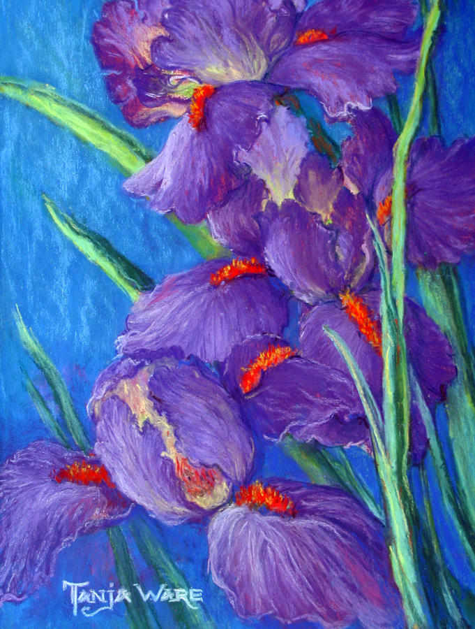 Irises Painting - Purple Passion by Tanja Ware