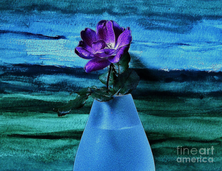 Photo Photograph - Purple Tea Rose by Marsha Heiken