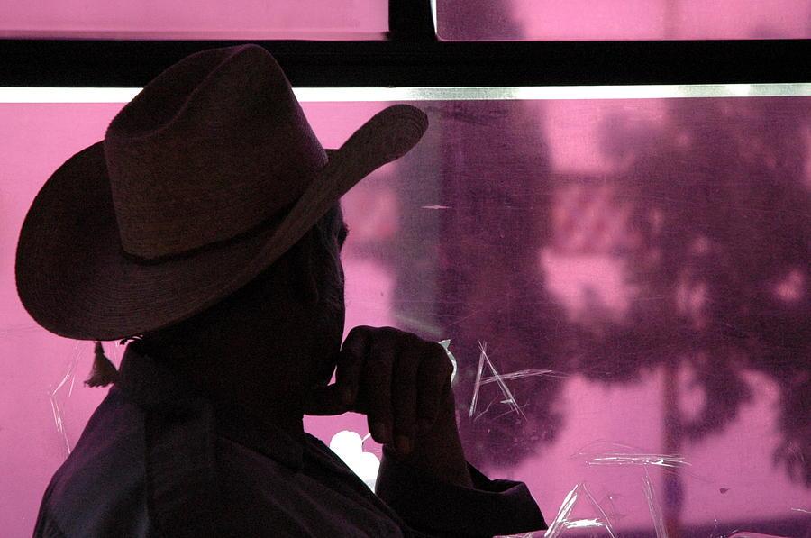 Window Photograph - Purple View  by Fabio Lorenzano