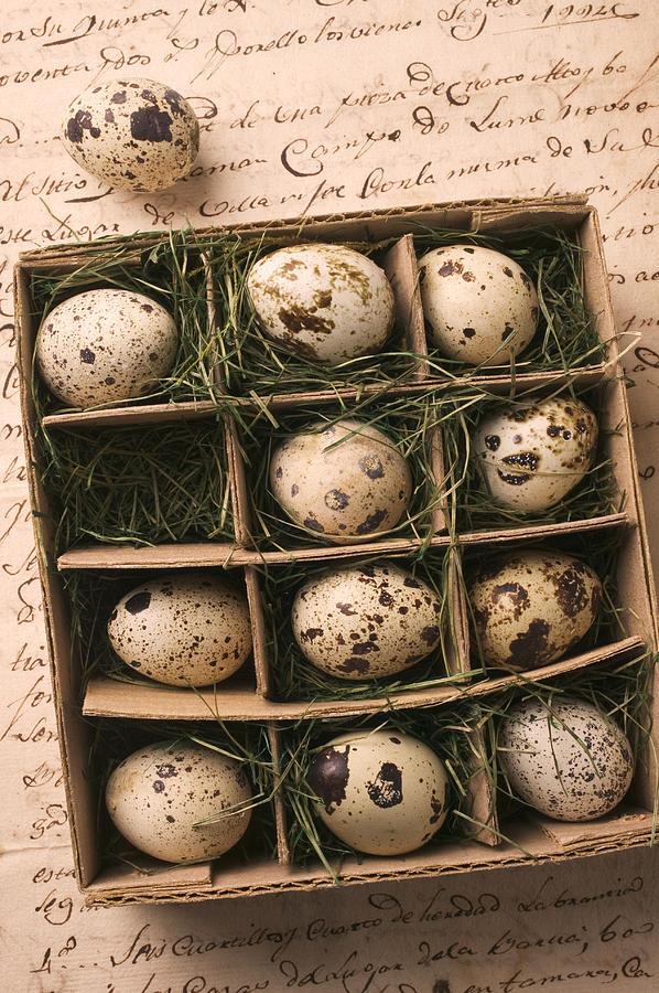 Quail Egg Photograph - Quail Eggs In Box by Garry Gay