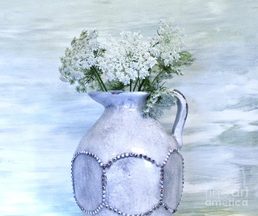 Photo Photograph - Queen Annes Lace by Marsha Heiken