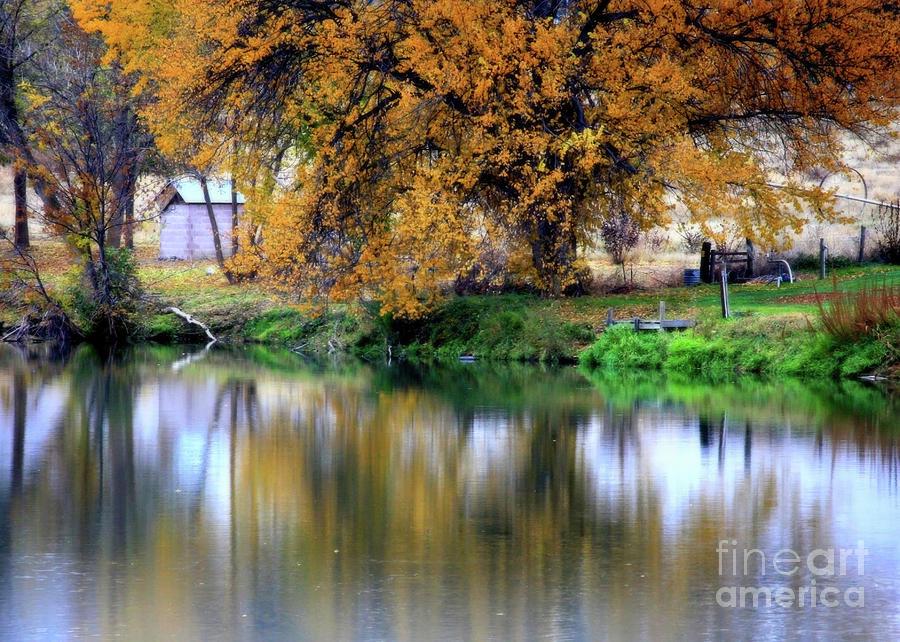 Autumn Photograph - Quiet Autumn Day by Carol Groenen