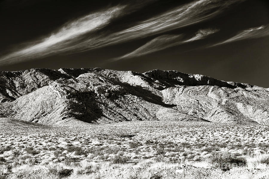 Sepia Photograph - Quiet In The Valley by John Rizzuto