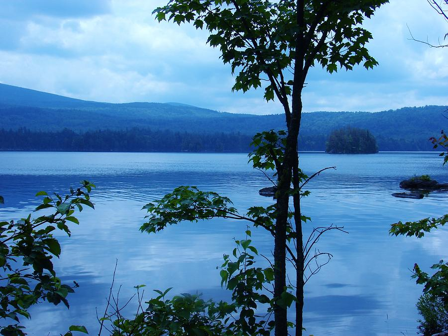 Trees Photograph - Quiet Lake by Sarah Buechler
