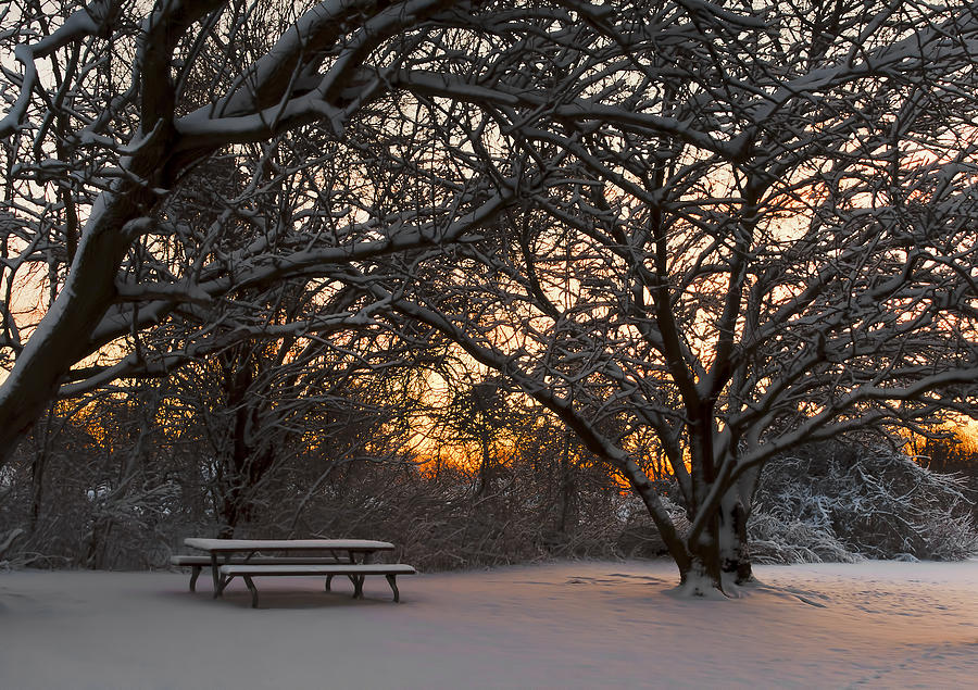 Snow Photograph - Quiet Moment Before Dawn by Yelena Rozov
