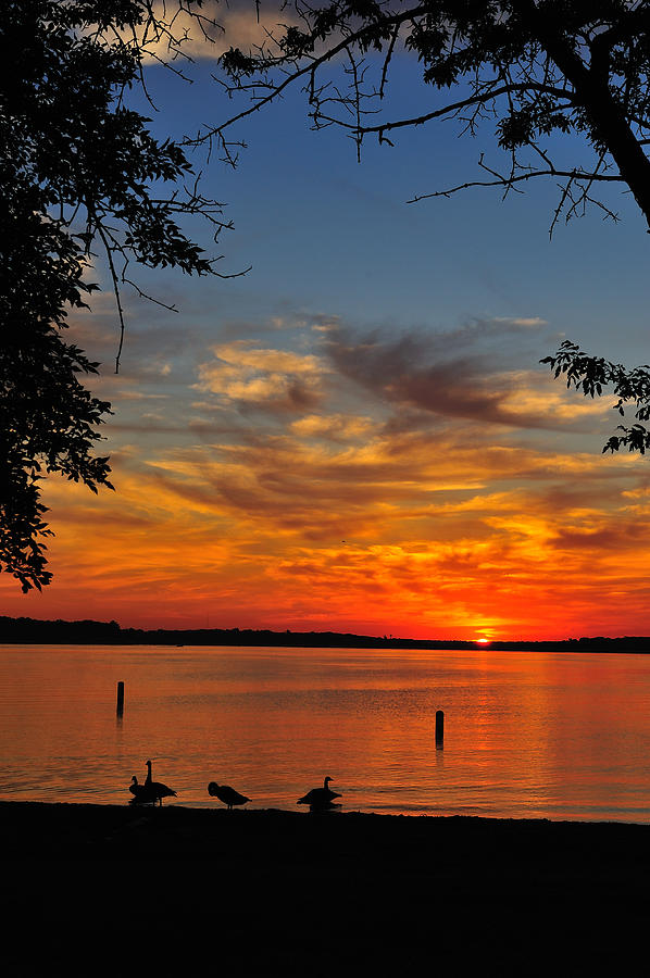Sunrise Photograph - Quiet Morning by Rusty Enderle