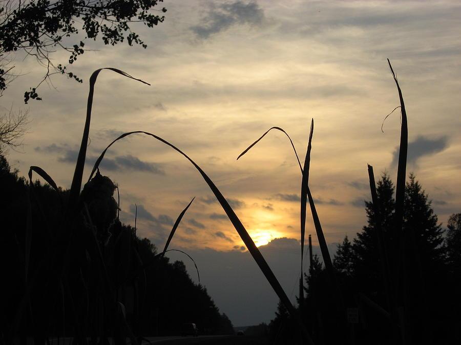 Sunset Photograph - Quietness  by Kimberly Davidson
