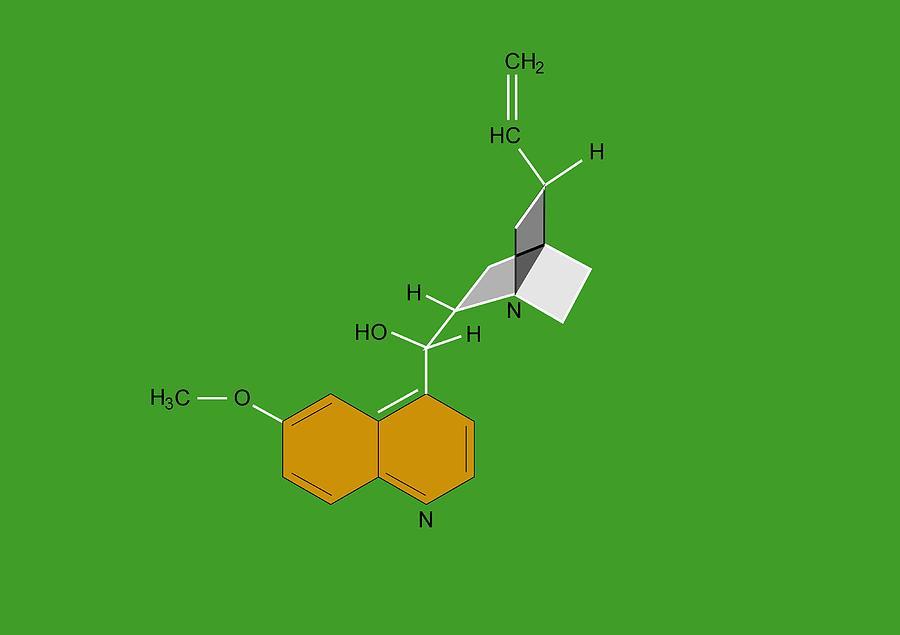 Quinine Photograph - Quinine Malaria Drug Molecule by Francis Leroy, Biocosmos