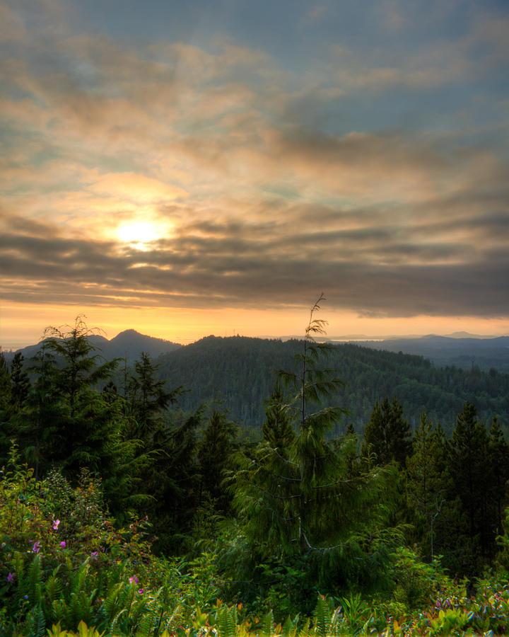 Radar Hill Photograph - Radar Hill Sunset - Tofino Bc Canada by Matt Dobson