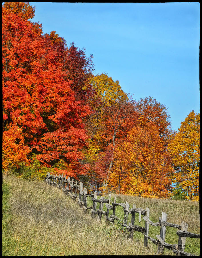 Rail Fence Photograph - Rail Fence In Fall by Peg Runyan