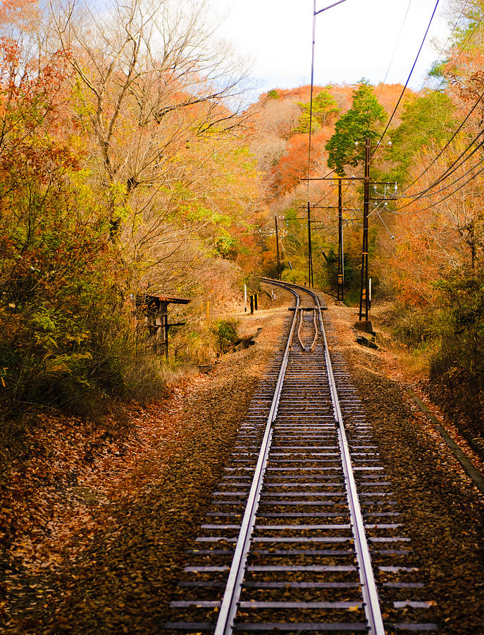 Vertical Photograph - Railway Track by (c) Eunkyung Katrien Park