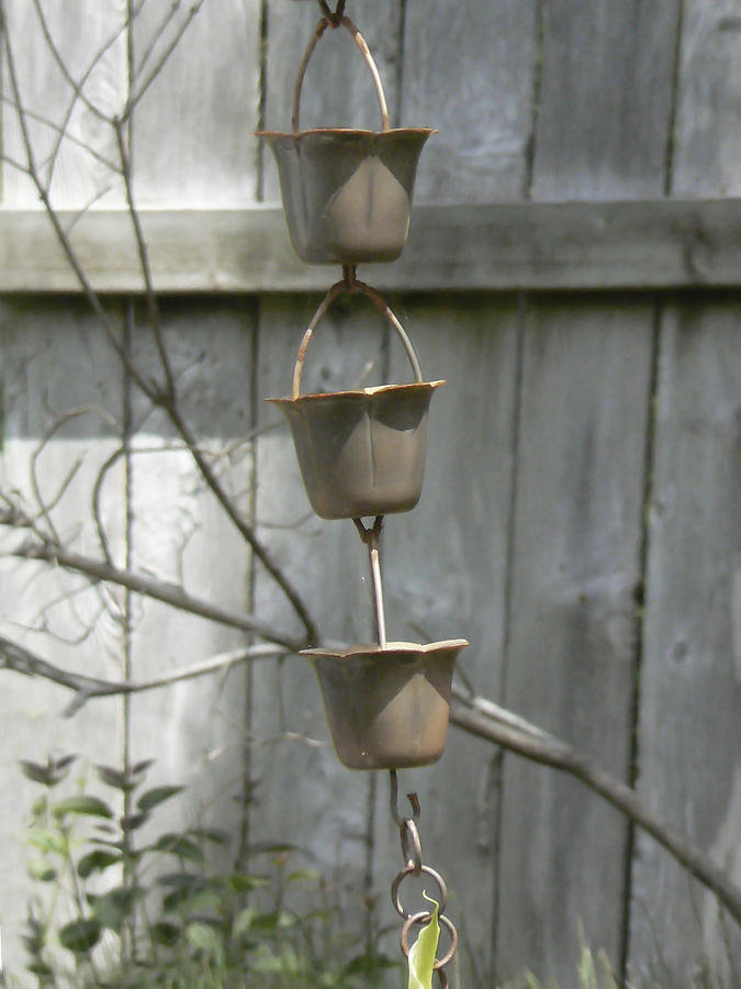 Copper Photograph - Rain Catchers by Pamela Patch