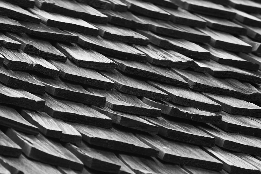 Rain Photograph - Rain Shield by Nicholas Evans