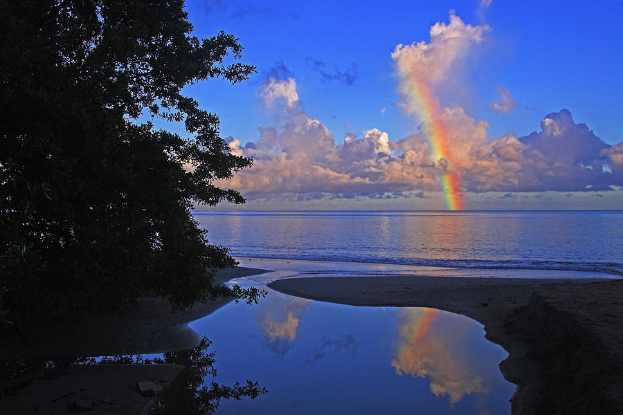 Rainbow at Dawn- St Lucia by Chester Williams