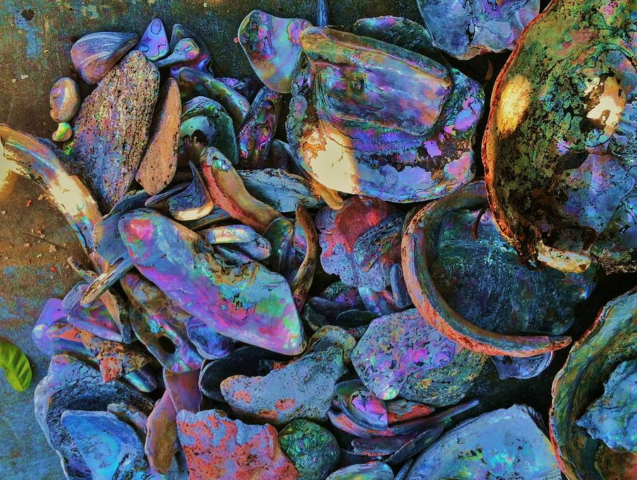 Pacific Ocean Photograph - Rainbow Beach by Helen Carson