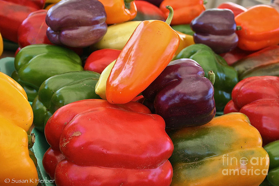 Peppers Photograph - Rainbow Bells by Susan Herber