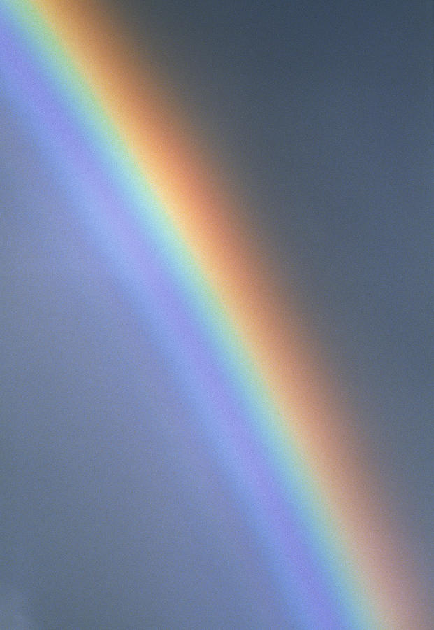 Rainbow Photograph - Rainbow by Dr Morley Read