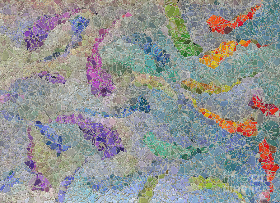 Abstract Photograph - Rainbow Fish Mosaic Tile Abstract by Debbie Portwood