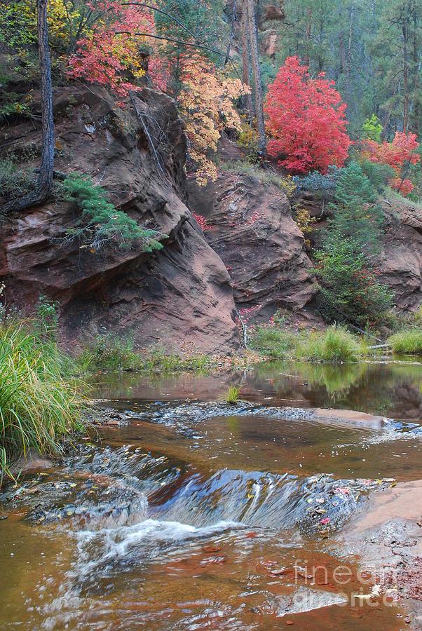 Sedona Photograph - Rainbow Of The Season And River Over Rocks by Heather Kirk