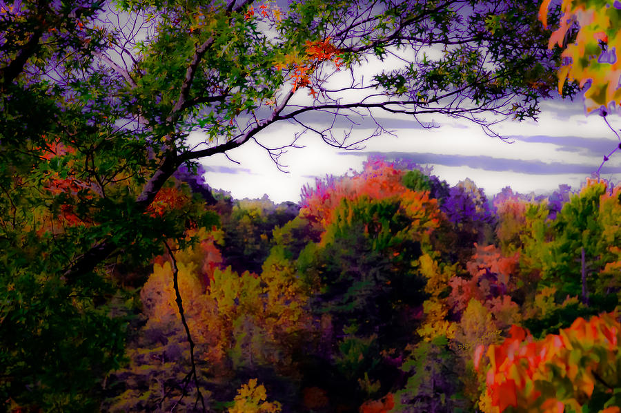 Smoky Mountains Photograph - Rainbow Treetops by DigiArt Diaries by Vicky B Fuller