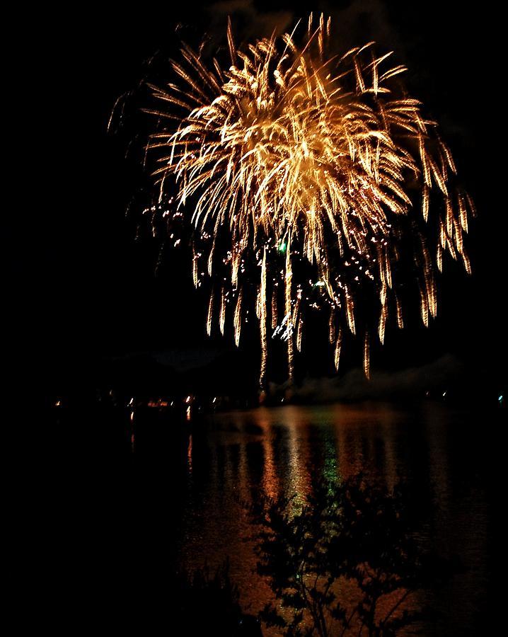 Fireworks Digital Art - Raining Fire by Don Mann