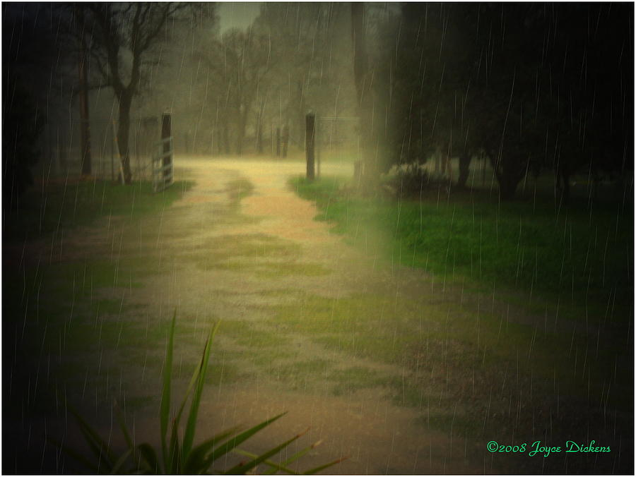 Rain Photograph - Rainy Daze Again by Joyce Dickens
