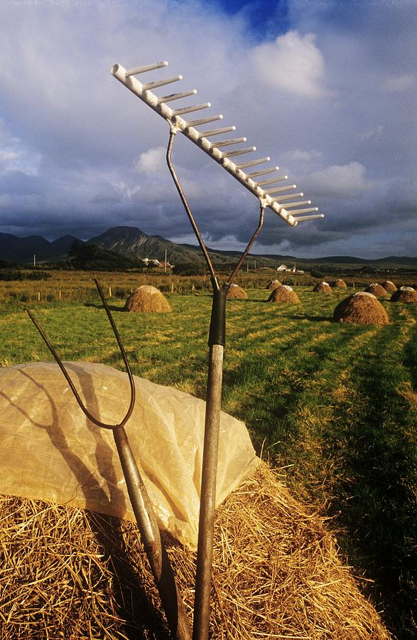 Agriculture Photograph - Rake With A Pitchfork On Hay In A by The Irish Image Collection