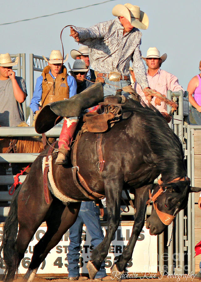 Cowboy Photograph - Ranch Bronc Rider by Rachelle Rice