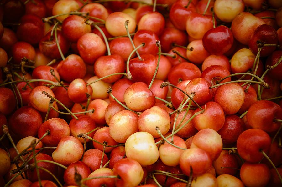 Ranier Photograph - Ranier Cherries by Jen Morrison