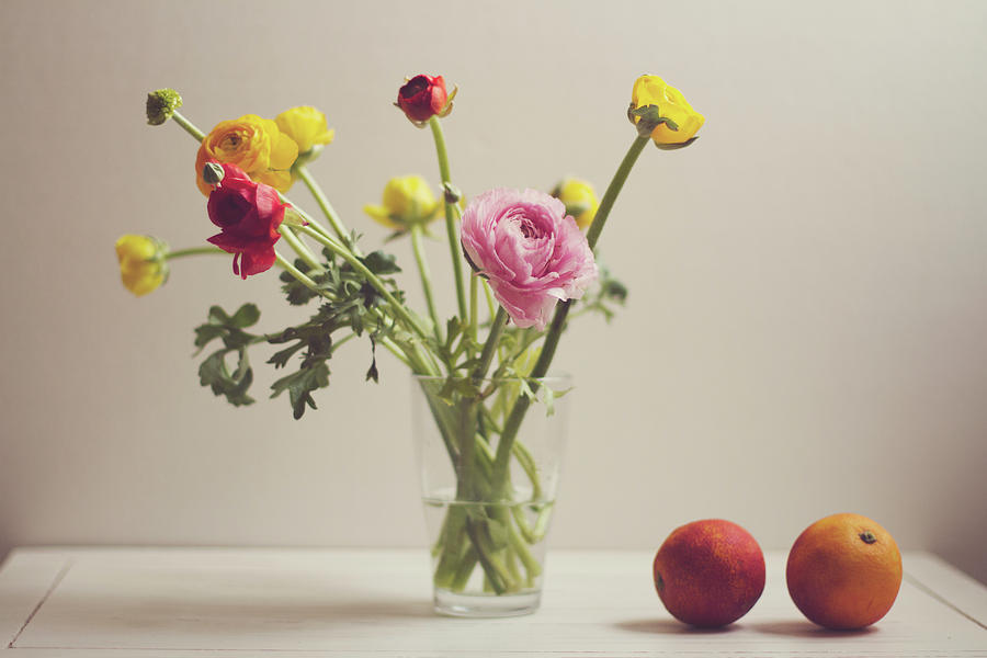 Horizontal Photograph   Ranunculus Flowers And Red Oranges On White Table  By Copyright Anna Nemoy(