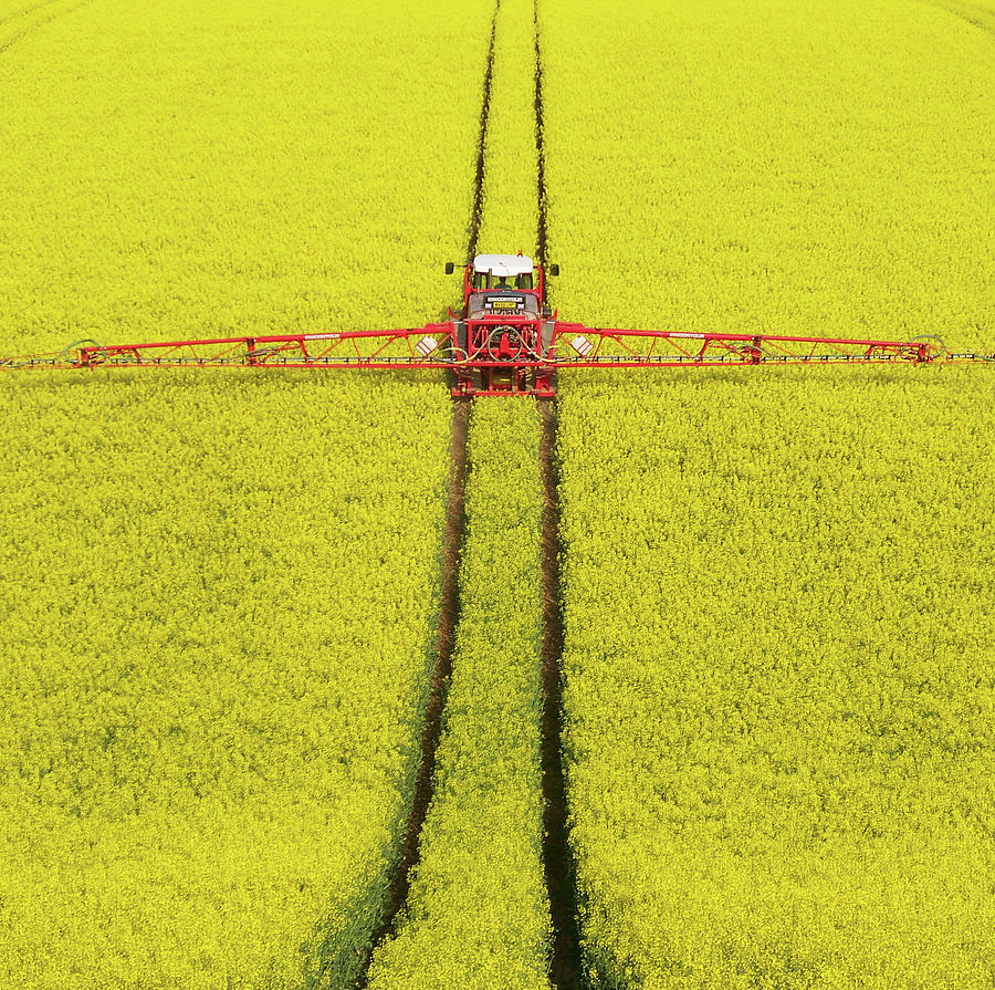 Horizontal Photograph - Rape Seed Spraying by JT images