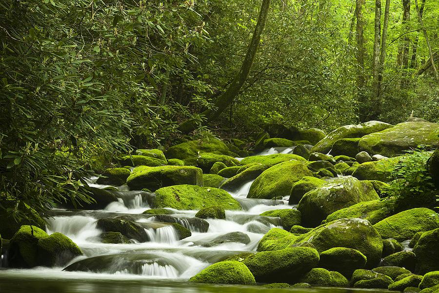River Photograph - Rapids At Springtime by Andrew Soundarajan