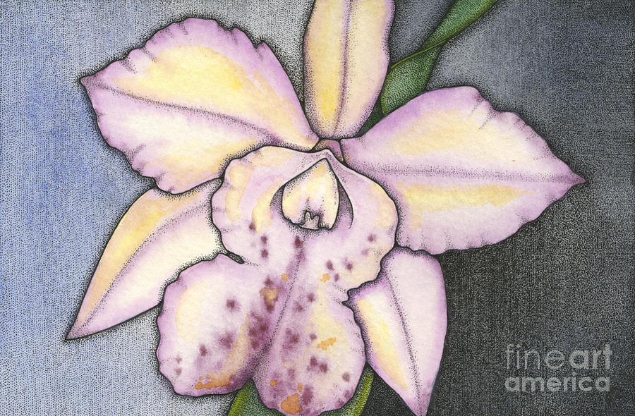 Orchid Painting - Rarest Beauty by Nora Blansett