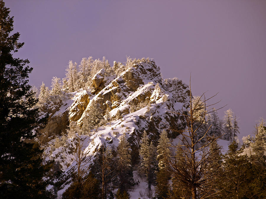 Snow Photograph - Rays Of Hope Warmth And Beauty by DeeLon Merritt