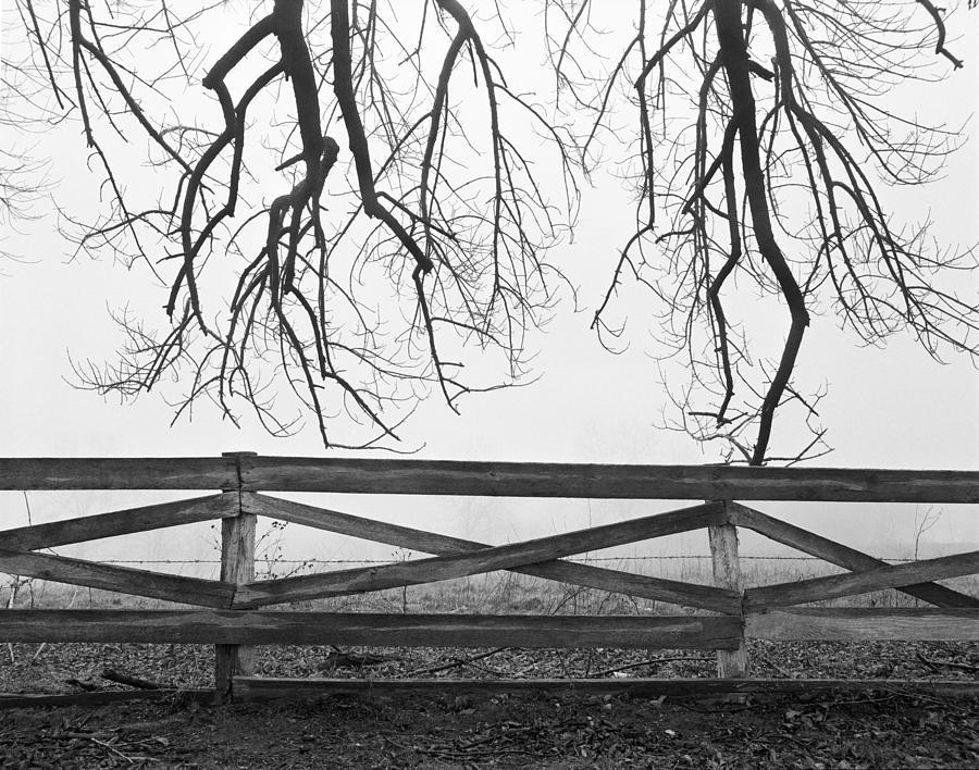 Rain Photograph - Reaching For Infinity by Jan W Faul