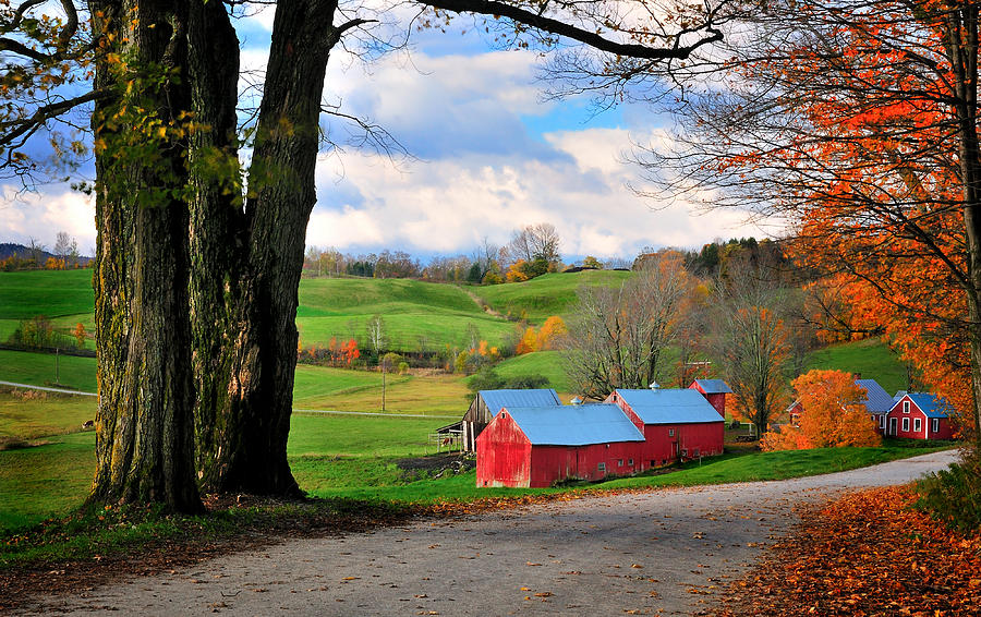 Jenne Farm Photograph - Reading Vermont - Jenne Road by Thomas Schoeller