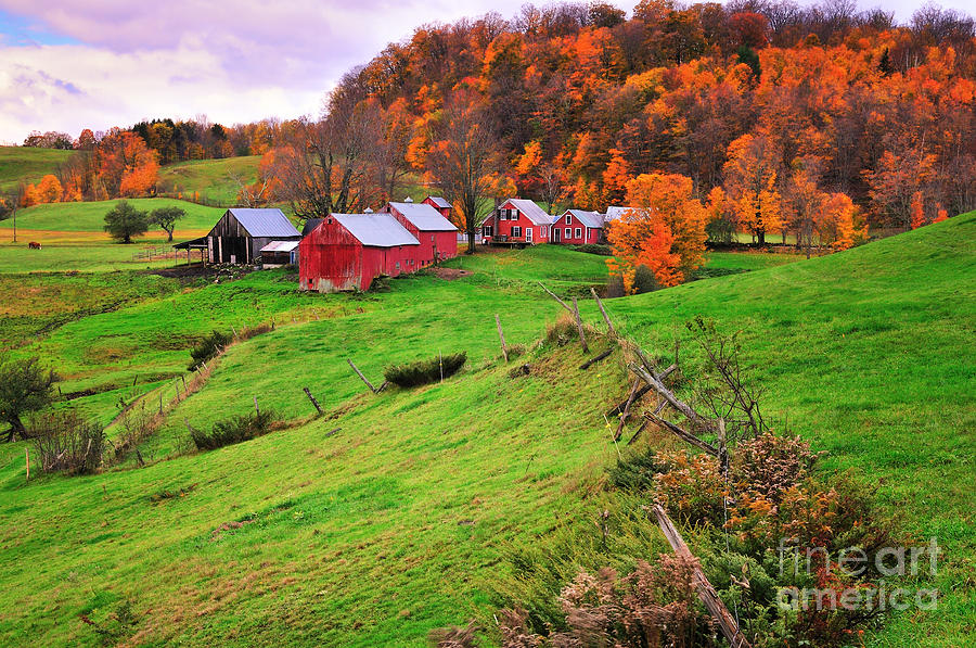 Farmscape Photograph - Reading Vermont Scenic by Thomas Schoeller