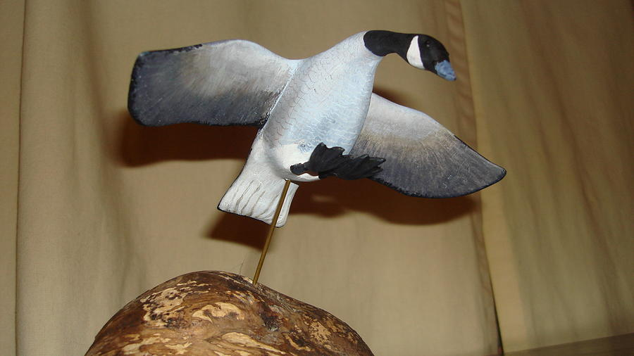 Canada Goose Sculpture - Ready Or Not by Dakota Sage