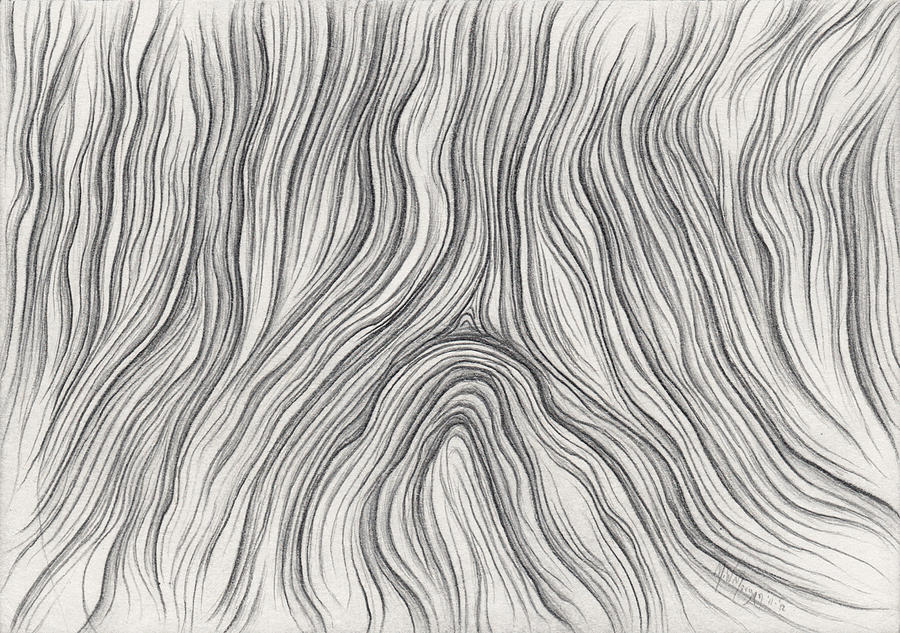Recycled Wood Grain Drawing by Michael Morgan