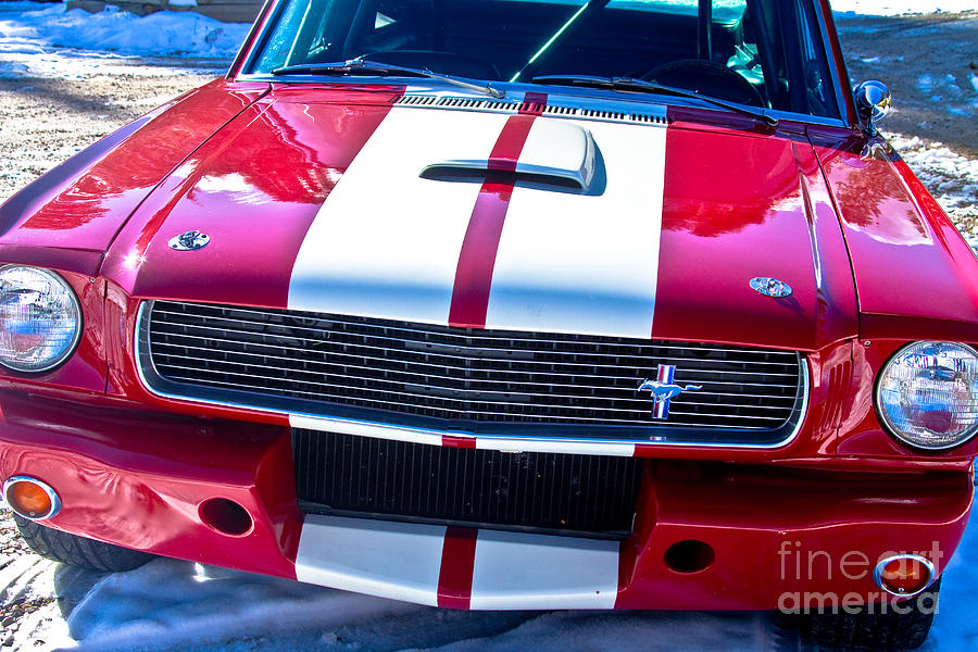 Red Photograph - Red 1966 Mustang Shelby by James BO  Insogna