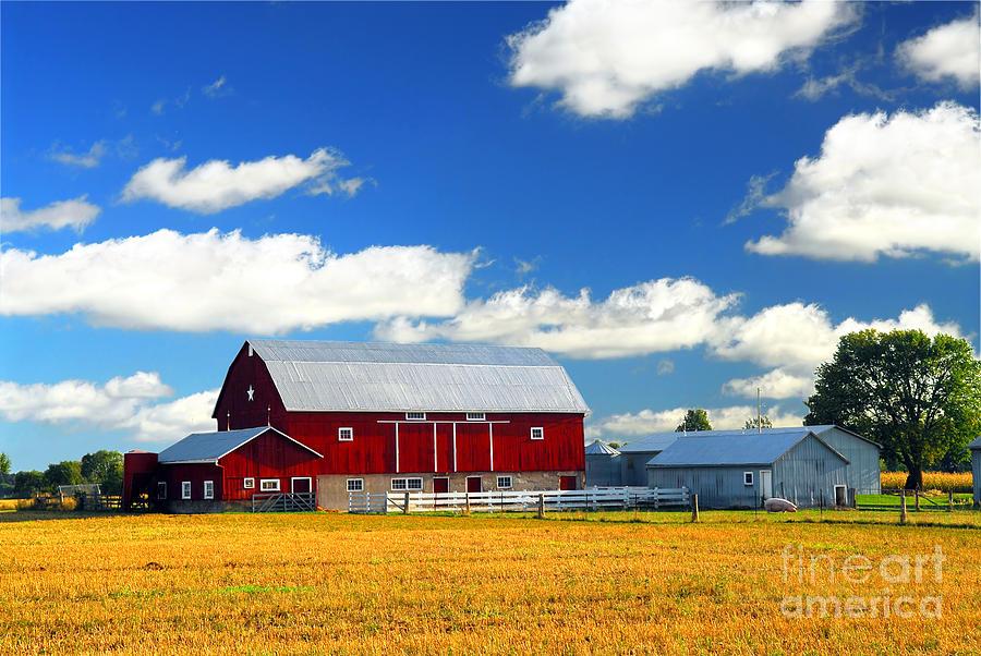 Landscape Photograph - Red Barn by Elena Elisseeva