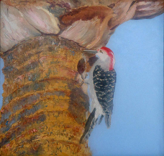 Wood Pecker Painting - Red Belly by Libby  Cagle