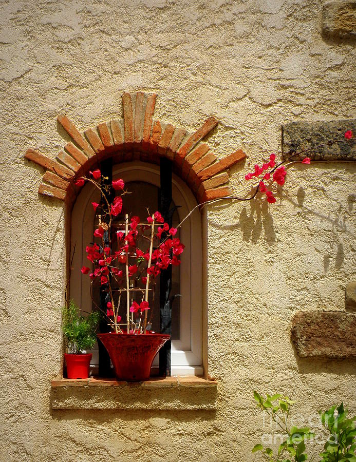 Window Photograph - Red Bougainvillea In Window by Lainie Wrightson
