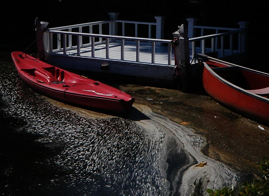 Venice Canal Photograph - Red Canoes by Daniele Smith