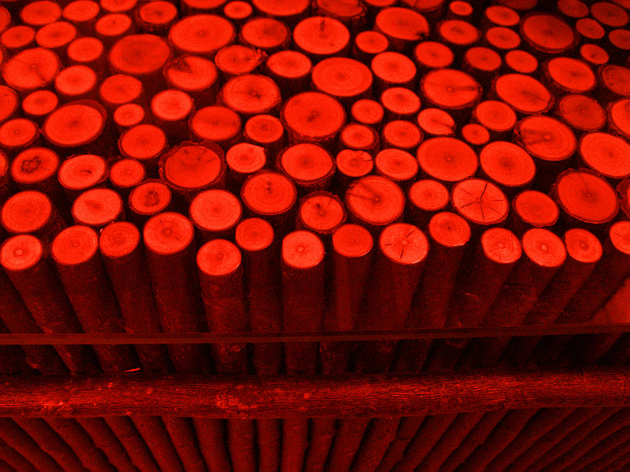 Red Photograph - Red Circle Sticks by Kym Backland